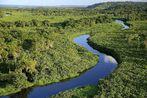 Governo do Estado lança o Mapeamento da Cobertura Vegetal da Bahi...