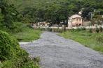 Sema e Inema apresentam projeto de restauração da vegetação nativ...