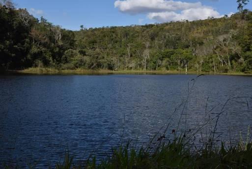 Empresa contratada concluiu diagnóstico das áreas selecionadas para restauração florestal